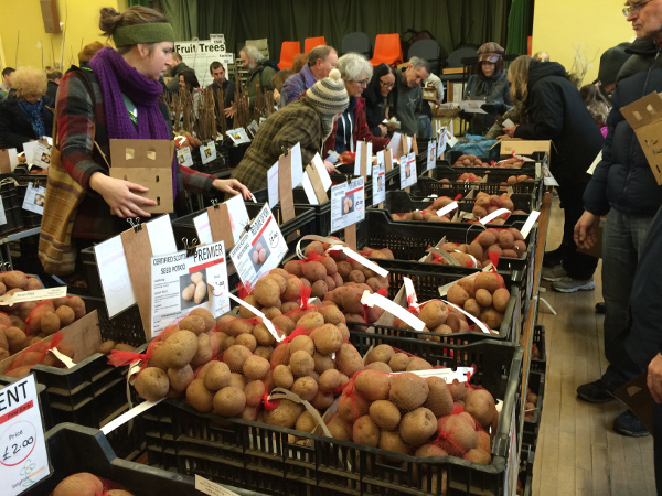 Marple Seed Potato Day